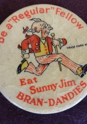 Sunny Jim w w denslow button
