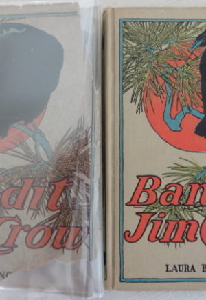 Bandit Jim Crow Book Dust Jacket