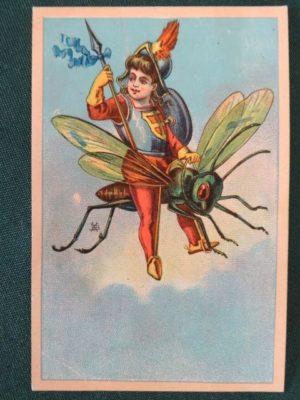 w w Denslow Trade Card fly wizard of oz
