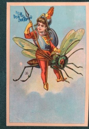 w w Denslow Trade Card fly wizard of oz